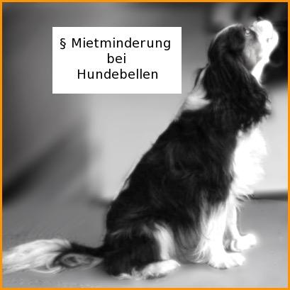 mietrecht hundehaltung bellprotokoll f r mietminderung nicht erforderlich hunderecht. Black Bedroom Furniture Sets. Home Design Ideas