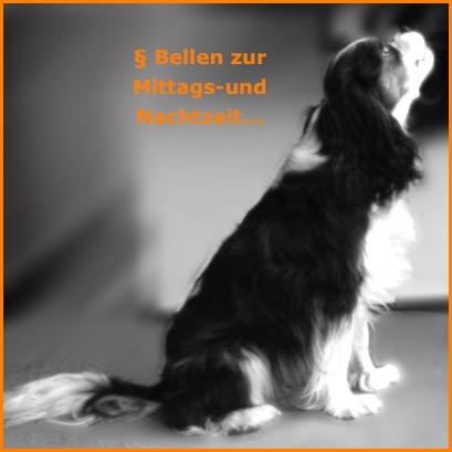 hundegebell ruhest rung auch hunde sollten ruhezeiten einhalten hunderecht anwalt. Black Bedroom Furniture Sets. Home Design Ideas